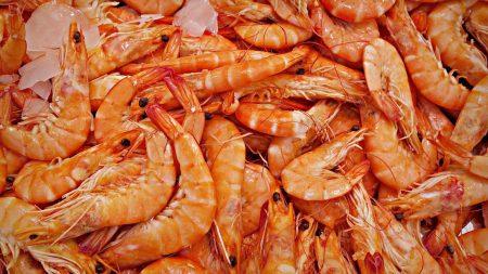 quelles-sont-proprietes-lhuile-krill.png